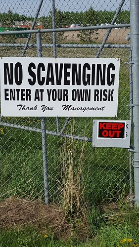 No Scavaging allowed