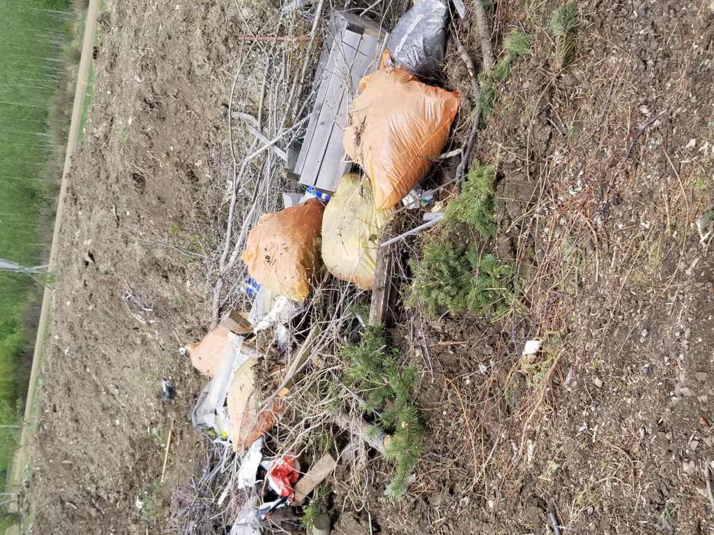Plastic Bags in wood burn pile
